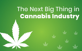 Next big thing in Cannabis Industry