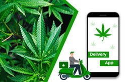 why you need cannabis delivery app