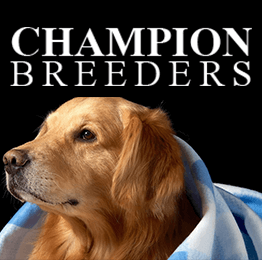 Thechampionbreeders small